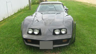 1981 Chevrolet Corvette 350 CI, Automatic presented as lot T102 at St. Charles, IL 2011 - thumbail image2
