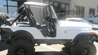 1982 Jeep CJ5 Renegade 304 HP, 4-Speed presented as lot F79 at St. Charles, IL 2011 - thumbail image2