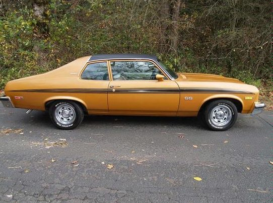1973 Chevrolet Nova SS Hatchback 307 CI, Automatic presented as lot F143 at St. Charles, IL 2011 - image2