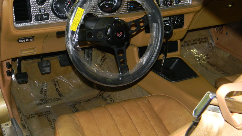 1978 Pontiac Trans Am 400 CI, Automatic presented as lot F187 at St. Charles, IL 2011 - image3