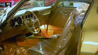 1978 Pontiac Trans Am 400 CI, 4-Speed presented as lot F200 at St. Charles, IL 2011 - thumbail image4