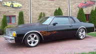 1979 Chevrolet Caprice 454/425 HP, Automatic presented as lot T143 at St. Charles, IL 2011 - thumbail image2