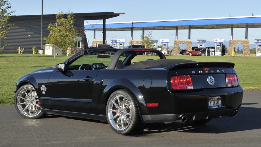 2008 Ford Shelby Super Snake NASCAR Edition 5.4L, 6-Speed presented as lot F204 at Schaumburg, IL 2013 - image2