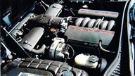 2001 Chevrolet Corvette Convertible 350/350 HP, Automatic presented as lot S99 at Kissimmee, FL 2009 - thumbail image3