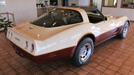 1981 Chevrolet Corvette 350/190 HP, Automatic presented as lot G151 at Kissimmee, FL 2013 - thumbail image3