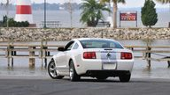 2007 Ford Shelby GT presented as lot W321 at Kissimmee, FL 2013 - thumbail image12