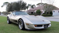 1982 Chevrolet Corvette Collector Edition 14,000 Miles, Bloomington Gold Certified presented as lot S79 at Kissimmee, FL 2013 - thumbail image12