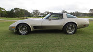 1982 Chevrolet Corvette Collector Edition 14,000 Miles, Bloomington Gold Certified presented as lot S79 at Kissimmee, FL 2013 - thumbail image2