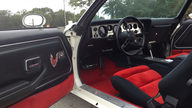 1981 Pontiac Trans Am Pace Car Edition Original and Unrestored presented as lot L140 at Kissimmee, FL 2013 - thumbail image4