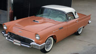 1957 Ford Thunderbird 312/245 HP, Minter Restoration presented as lot S84.1 at Kissimmee, FL 2013 - thumbail image11