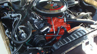 1967 Chevrolet Chevelle SS Hardtop 396 CI, Automatic presented as lot S23 at Kissimmee, FL 2013 - thumbail image5