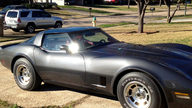 1981 Chevrolet Corvette 350 CI, 4-Speed presented as lot T150 at Houston, TX 2013 - thumbail image8