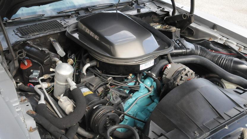1979 Pontiac Trans Am 10th Anniversary 400 CI, 4-Speed presented as lot F67 at Houston, TX 2013 - image5