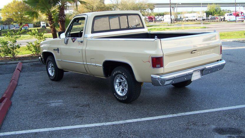1985 Chevrolet S10 Pickup 350/350 HP, Automatic presented as lot F164 at Kansas City, MO 2010 - image2