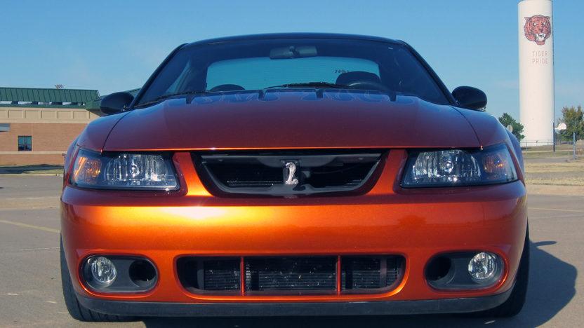 2004 Ford Mustang Cobra SVT 4.6/875 HP, 6-Speed presented as lot F13 at Kansas City, MO 2011 - image2