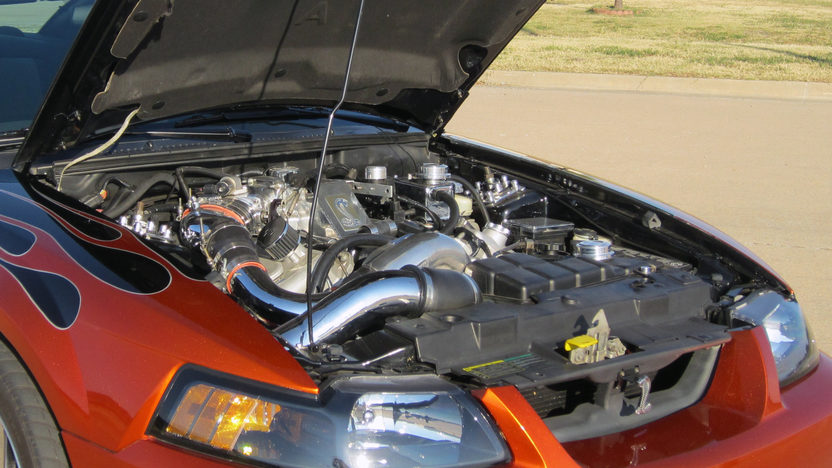 2004 Ford Mustang Cobra SVT 4.6/875 HP, 6-Speed presented as lot F13 at Kansas City, MO 2011 - image6