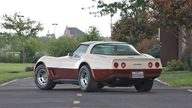 1981 Chevrolet Corvette Coupe Automatic presented as lot S94 at Canal Winchester, OH 2010 - thumbail image2