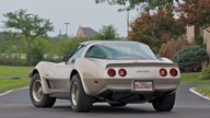1982 Chevrolet Corvette Coupe Collector Edition presented as lot S95 at Canal Winchester, OH 2010 - thumbail image3