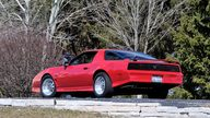 1982 Pontiac Trans Am 350/611 HP, 5-Speed presented as lot T211 at Indianapolis, IN 2013 - thumbail image3